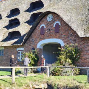 Ein besonderer Drehort für das gesamte Team war die Außenanlage von Gut Rixdorf. Durch die vielen historischen Gebäude war dieser Ort perfekt für unseren Film, der bereits in 9 Tagen online auf unserer Website erscheint.